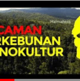 Ancaman Perkebunan Monokultur