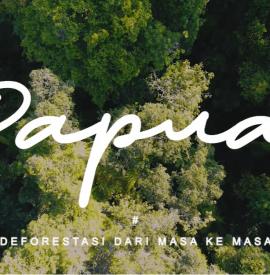 Papua Deforestasi Dari Masa Ke Masa